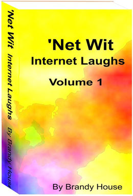 net 1book cover